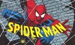 Voir la fiche Spider-Man - collection Semic [1991]