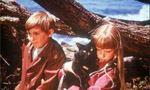 Voir la critique de La montagne ensorcelée : Martiens amnésiques en culottes courtes