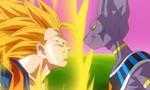 Voir la critique de Dragon Ball Z : La Bataille des Dieux [2015] : Les dieux sont tombés sur la tête...