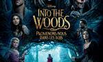 Voir la critique de Into the Woods : Promenons-nous dans les bois [2015] : Il était une fois des contes réunis en un seul film...