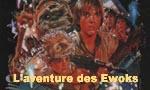 Voir la fiche Star Wars : Ewoks : La bataille pour Endor [#2 - 1984]
