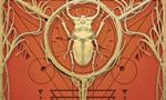 Voir la critique de Biotanistes [2021] : Post apo steampunk où règnent les sorcières