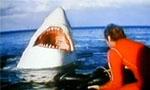 Voir la critique de La Mort au large : Spaghetti au requin sauce Spielberg