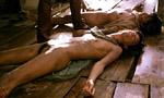 Voir la fiche Amazonia, la jungle blanche [1986]