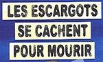 Voir la fiche Les escargots se cachent pour mourir [2003]