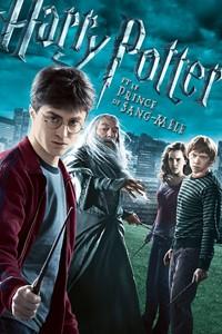 Harry Potter et le prince de sang-mêlé [#6 - 2009]