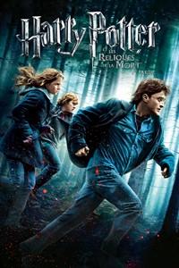 Harry Potter et les Reliques de la Mort - Partie 1 [#7 - 2010]