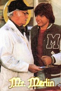 Légendes arthuriennes : Monsieur Merlin [1981]
