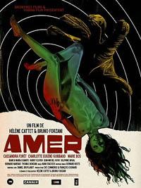 Amer [2010]