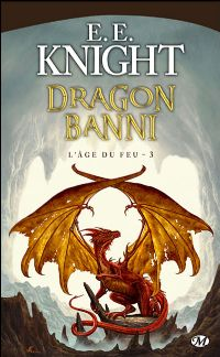 L'Âge du Feu : Dragon banni #3 [2009]
