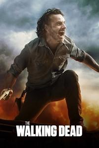 The Walking Dead [2010]