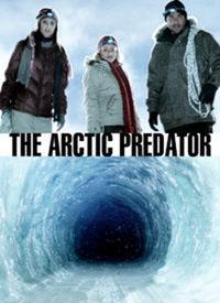 Arctic Predator [2011]
