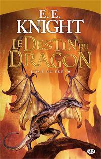 L'Âge du Feu : Le destin du dragon [#6 - 2013]