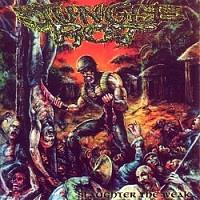 Jungle Rot : Slaughter The Weak [1997]