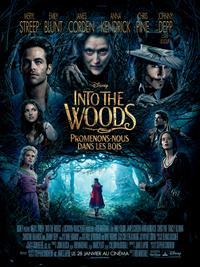 Into the Woods : Promenons-nous dans les bois [2015]