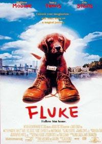 Fluke [1995]