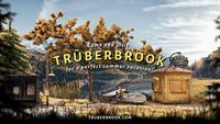 Trüberbrook - eshop Switch