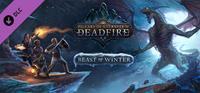 Pillars of Eternity II : Deadfire - Beast of Winter - PC