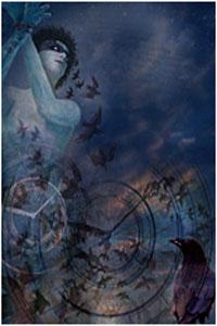 Douze Heures, Du Crépuscule à l'Aube [2005]