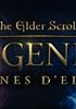 Voir la fiche The Elder Scrolls Legends : Les Lunes d'Elsweyr [2019]
