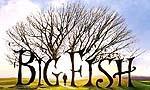 Voir la critique de Big Fish, OST : Magique à sa manière...