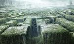 Voir la fiche L'épreuve : Le labyrinthe [2012]