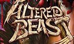 Voir la fiche Altered Beast : Guardian of the Realms [2004]