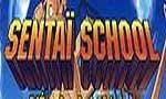 Voir la critique de Sentaï School : Sentaï school
