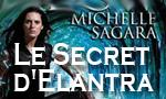 Voir la fiche Le Secret d'Elantra [2006]