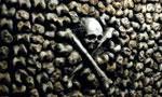 Voir la fiche Catacombs : Catacombe [2007]