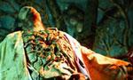 Voir la critique de Organizm : Encore un qui n'avait pas la main verte...