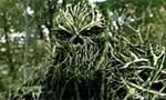 Voir la critique de Le monstre du marais : Swamp Devil ou La mort en branche