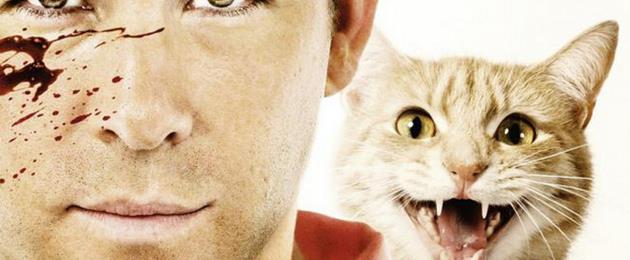 The Voices : L'affiche officielle dévoilée !  : Une affiche qui a du chat !