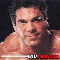Lou Ferrigno  Acteur, Doubleur (voix)