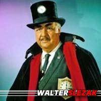 Walter Slezak  Acteur
